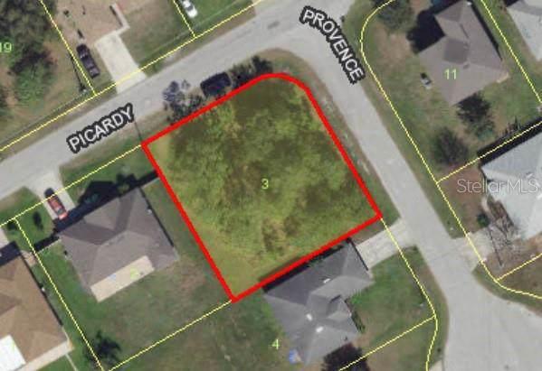 Picardy Drive, Kissimmee, FL 34759 (MLS #S5028993) :: Team Bohannon Keller Williams, Tampa Properties