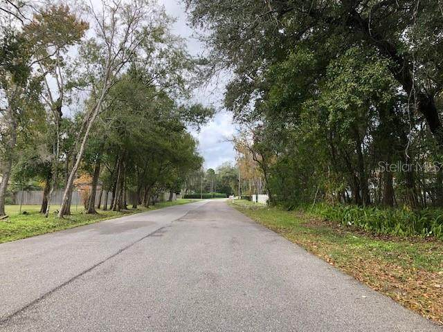 6055 Cornelia Avenue, Orlando, FL 32807 (MLS #S5029719) :: Team Pepka