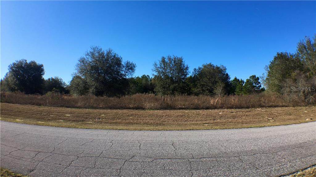 167 Citrus Springs Boulevard - Photo 1