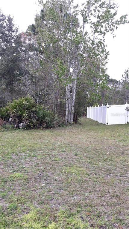 Dudley Drive, Kissimmee, FL 34758 (MLS #S5029882) :: The Light Team