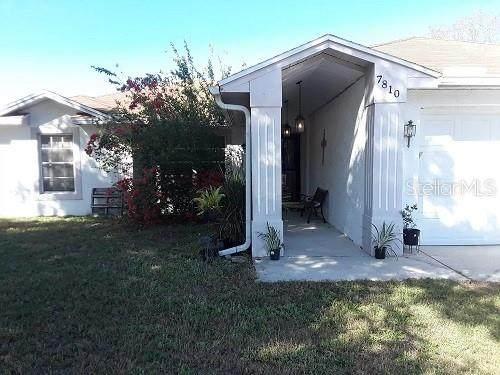 7810 Lewis Road, Lakeland, FL 33810 (MLS #S5030688) :: Rabell Realty Group