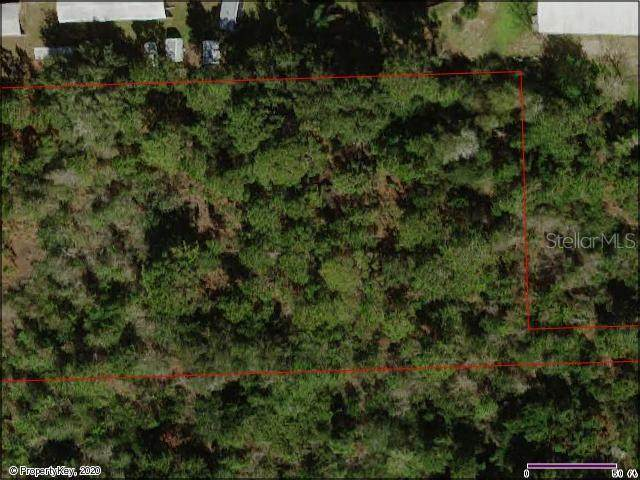 Chaplain Road, Saint Cloud, FL 34772 (MLS #S5032052) :: The Duncan Duo Team
