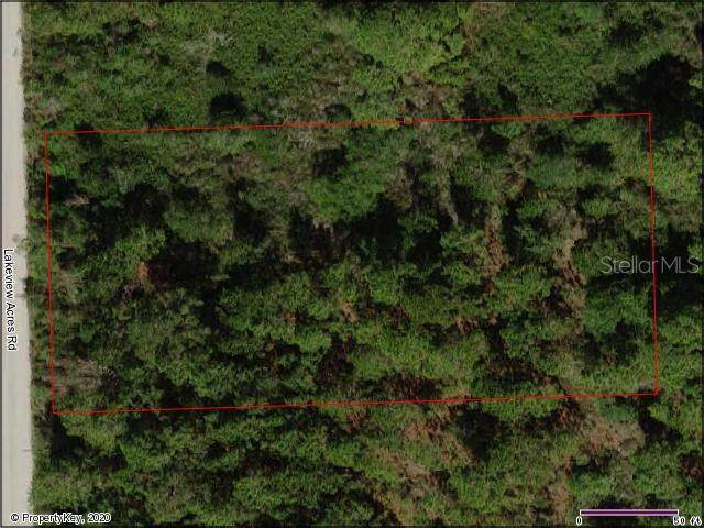 Lakeview Acres Road, Saint Cloud, FL 34772 (MLS #S5032059) :: The Duncan Duo Team