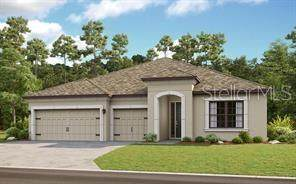3910 Redfin Place, Kissimmee, FL 34746 (MLS #S5032234) :: Bustamante Real Estate