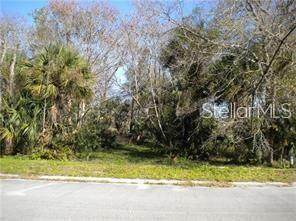 Paddock Street, Orlando, FL 32833 (MLS #S5033832) :: The Duncan Duo Team