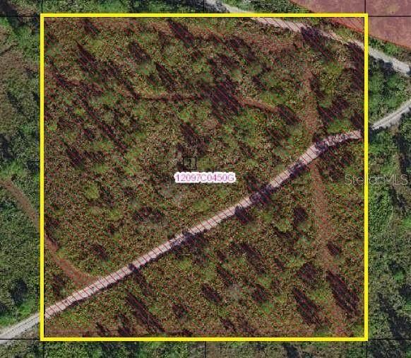 Suburban Ests Sec 30...2421 000G, Saint Cloud, FL 34771 (MLS #S5034310) :: Griffin Group