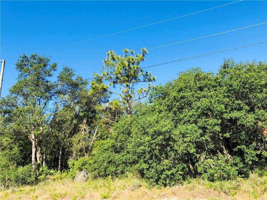 1435 Punta Gorda Drive - Photo 1