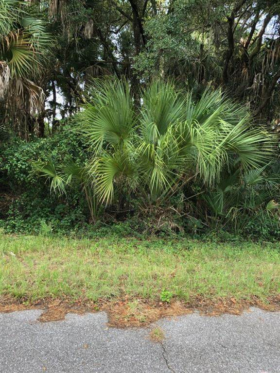 Lancer Avenue, North Port, FL 34286 (MLS #S5036743) :: Team Bohannon Keller Williams, Tampa Properties