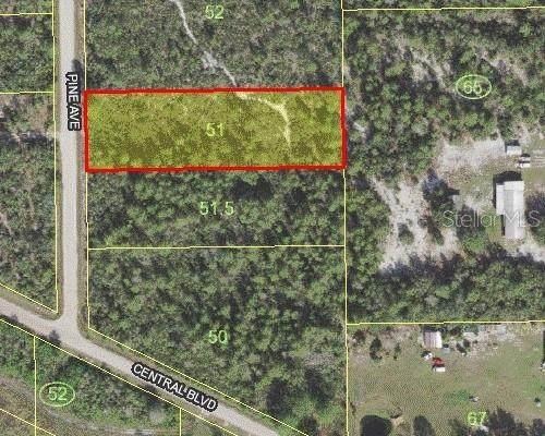 Pine Avenue, Okeechobee, FL 34972 (MLS #S5039011) :: Team Buky