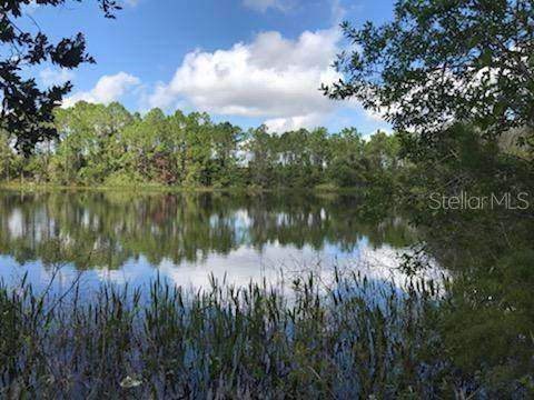 3100 Hickory Tree Rd Road - Photo 1