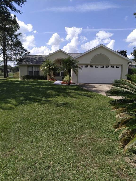 11700 Constance Way, Clermont, FL 34711 (MLS #S5041411) :: Frankenstein Home Team
