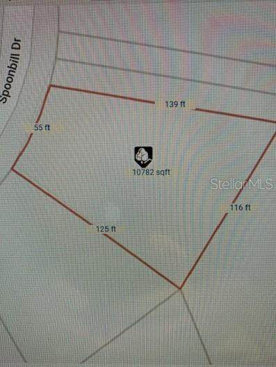 248 Spoonbill Drive, Poinciana, FL 34759 (MLS #S5042363) :: Premier Home Experts