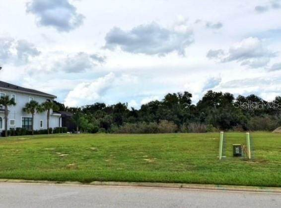 544 Muirfield Loop, Reunion, FL 34747 (MLS #S5044069) :: Young Real Estate
