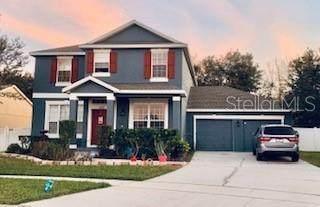 3218 Hopewell Drive, Kissimmee, FL 34746 (MLS #S5045401) :: Premier Home Experts