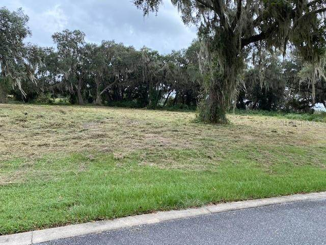 447 Long And Winding Road, Groveland, FL 34737 (MLS #S5045664) :: Realty Executives Mid Florida