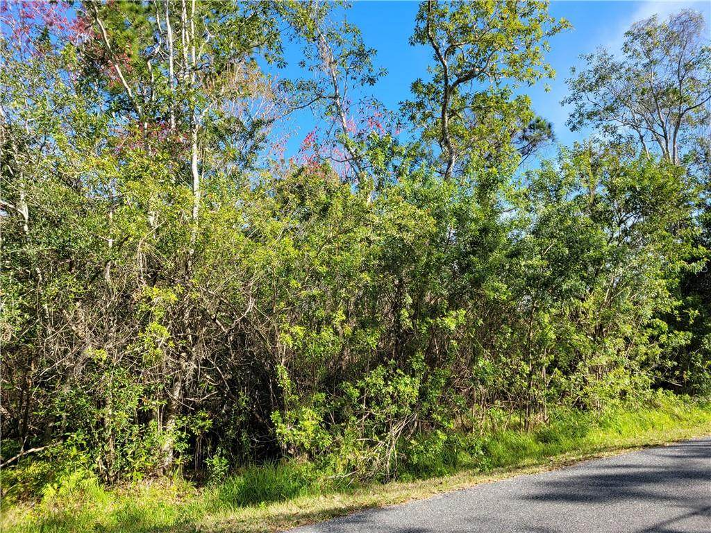 4785 Lillian Black Road - Photo 1