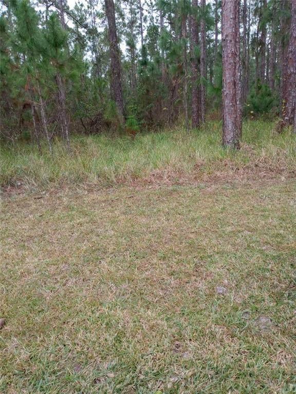 Poinciana Dr, Indian Lake Estates, FL 33855 (MLS #S5046399) :: Delta Realty, Int'l.