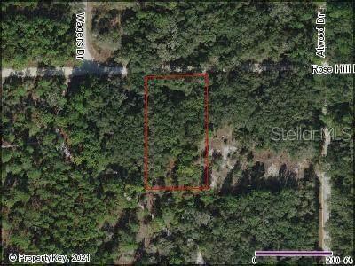 Rosehill Drive, Webster, FL 33597 (MLS #S5046491) :: Bridge Realty Group