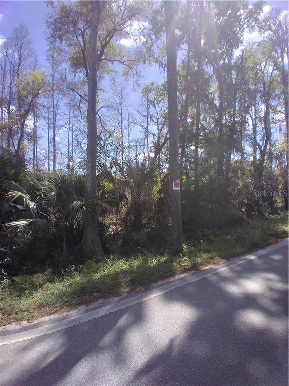 2050 Evans Road, Polk City, FL 33868 (MLS #S5049170) :: Bridge Realty Group