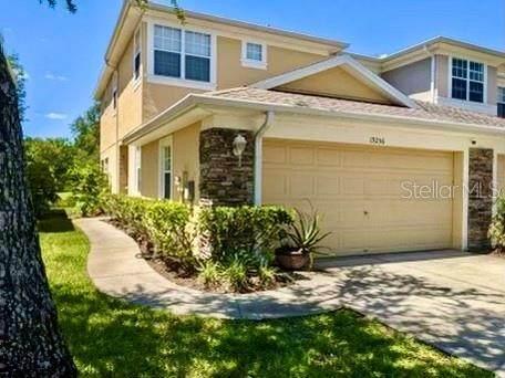19256 Stone Hedge Drive, Tampa, FL 33647 (MLS #S5050647) :: Positive Edge Real Estate