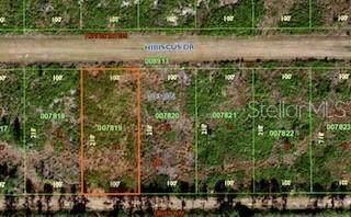 211 Hibiscus Drive, Lake Wales, FL 33898 (MLS #S5051350) :: Everlane Realty