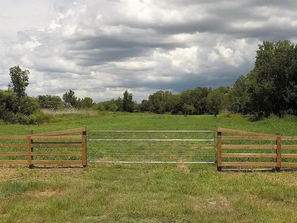 Hickory Tree Road - Photo 1