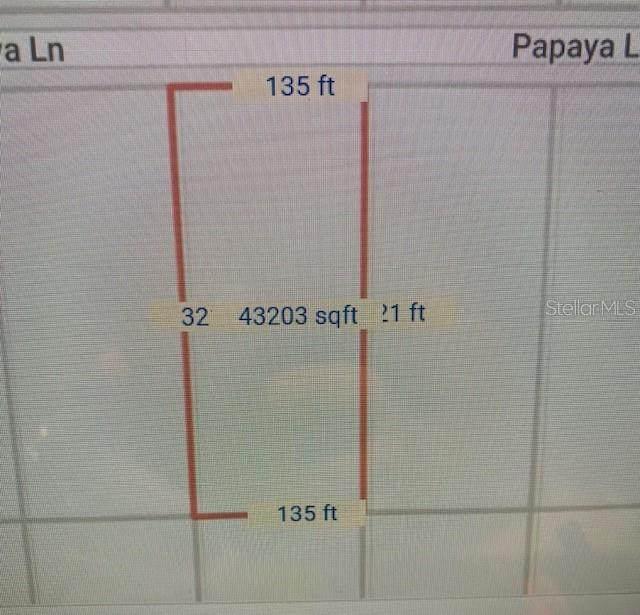 Sw Papaya Lane, Dunnellon, FL 34431 (MLS #S5053059) :: Globalwide Realty