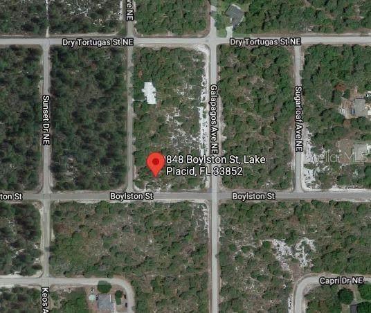 848 Boylston Street, Lake Placid, FL 33852 (MLS #S5053842) :: RE/MAX Elite Realty