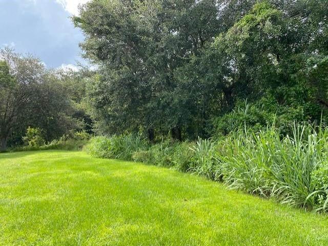 209 S Klondike Avenue, Orlando, FL 32811 (MLS #S5055711) :: Everlane Realty
