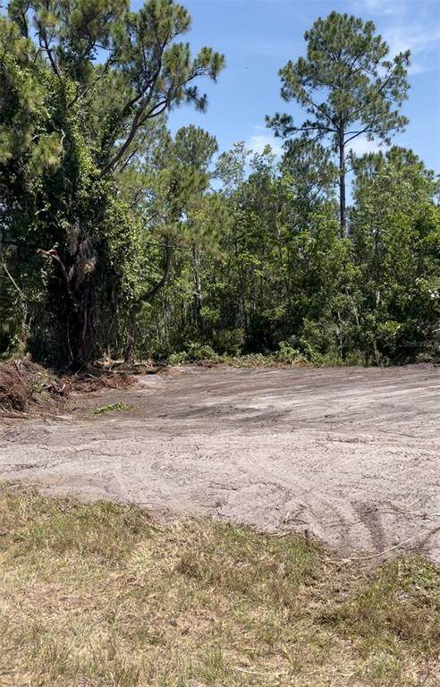 Marlin Drive, Poinciana, FL 34759 (MLS #S5056552) :: The Paxton Group