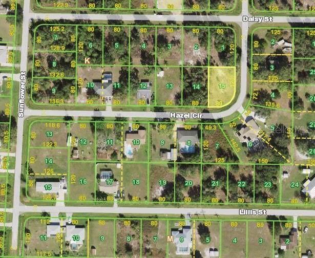 413 Hazel Circle, Punta Gorda, FL 33982 (MLS #S5056624) :: Blue Chip International Realty