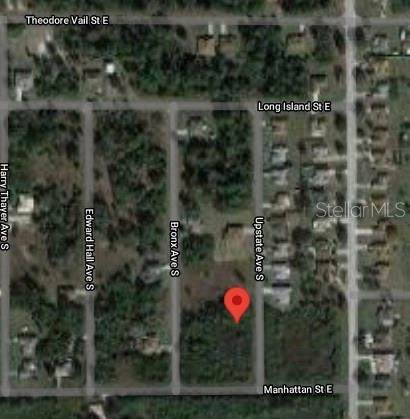 542 Upstate Avenue S, Lehigh Acres, FL 33974 (MLS #S5056625) :: Realty Executives