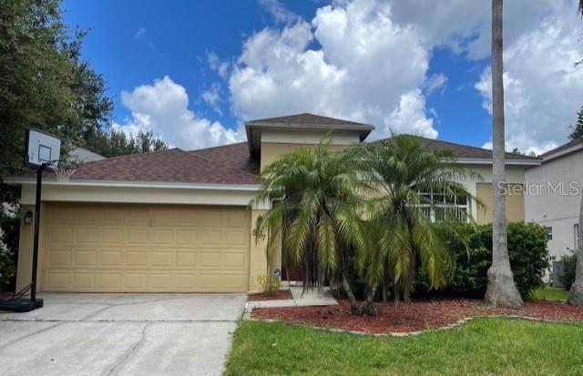 517 Fitzwilliam Way, Orlando, FL 32828 (MLS #S5056966) :: Zarghami Group