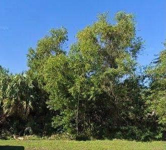 2044 SE Berkshire Boulevard, Port Saint Lucie, FL 34952 (MLS #S5057954) :: Cartwright Realty
