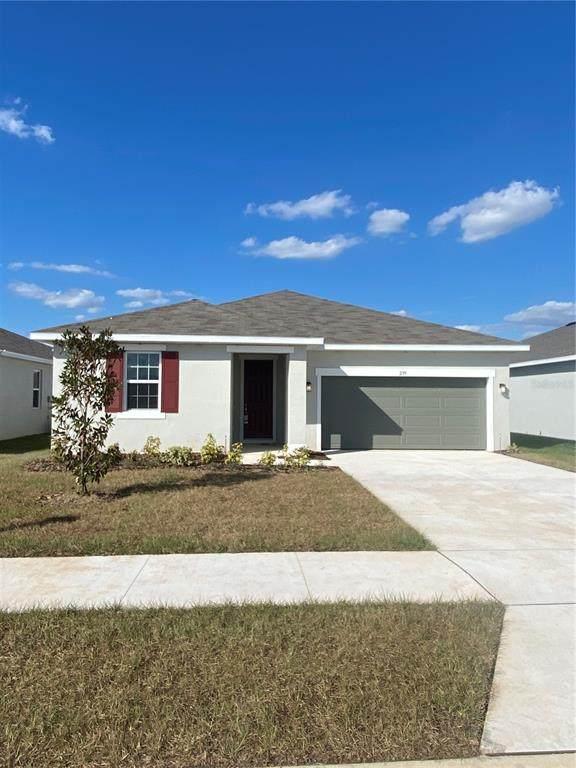 299 Lake Smart Circle, Winter Haven, FL 33881 (MLS #S5058227) :: Engel & Volkers