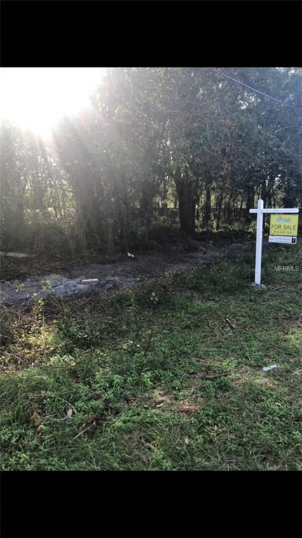 3716 Berger Road, Lutz, FL 33548 (MLS #T2917010) :: The Duncan Duo Team