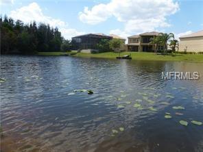 17938 Cachet Isle Drive, Tampa, FL 33647 (MLS #T2920198) :: The Duncan Duo Team