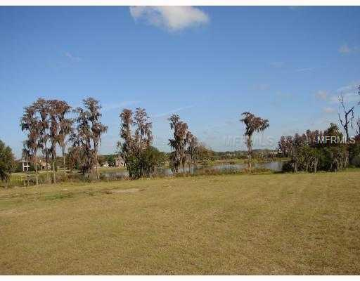17109 Breeders Cup Drive, Odessa, FL 33556 (MLS #T2923350) :: Griffin Group
