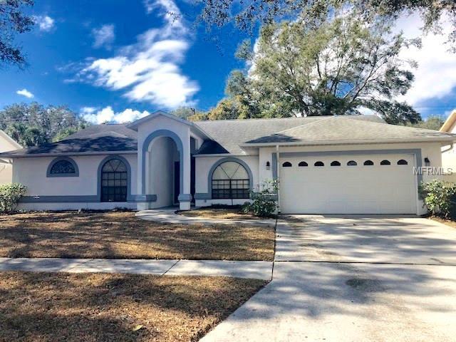 910 Balsamina Drive, Brandon, FL 33510 (MLS #T2923798) :: Griffin Group