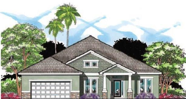 110 S Himes Avenue, Tampa, FL 33609 (MLS #T2923848) :: Griffin Group