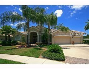 19116 Saint Emilion Court, Lutz, FL 33558 (MLS #T2929468) :: Cartwright Realty