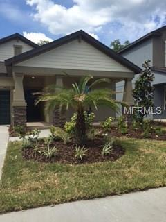 14212 Blue Dasher Drive, Riverview, FL 33569 (MLS #T2930463) :: Team Turk Real Estate