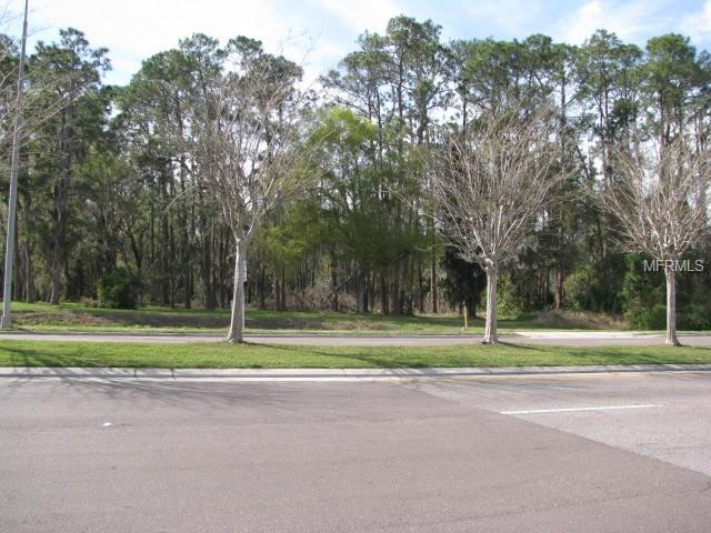 Park Road, Plant City, FL 33563 (MLS #T2931447) :: Griffin Group