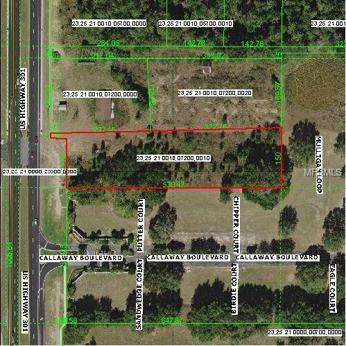 9424 Us Highway 301, Dade City, FL 33525 (MLS #T2933292) :: Griffin Group