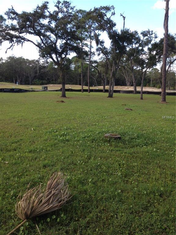 7824 Marsh Pointe Drive, Tampa, FL 33635 (MLS #T2934813) :: Delgado Home Team at Keller Williams