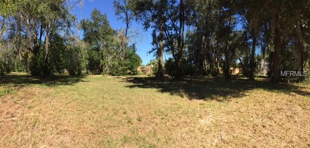 29523 Chapel Park Drive, Wesley Chapel, FL 33543 (MLS #T2935039) :: The Duncan Duo Team