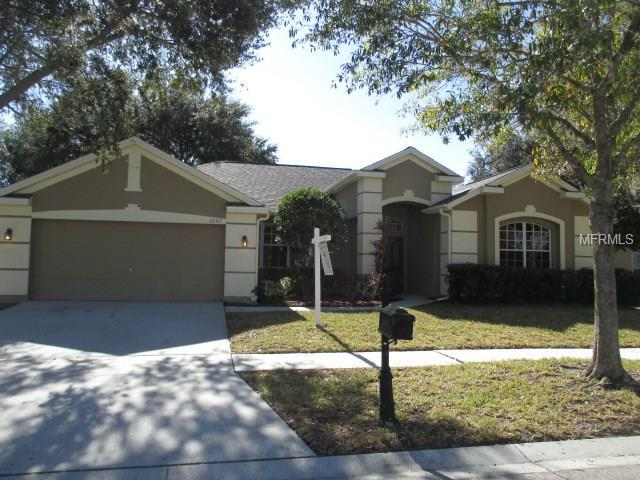 2207 Lodgeview Way, Valrico, FL 33596 (MLS #T2936219) :: Arruda Family Real Estate Team