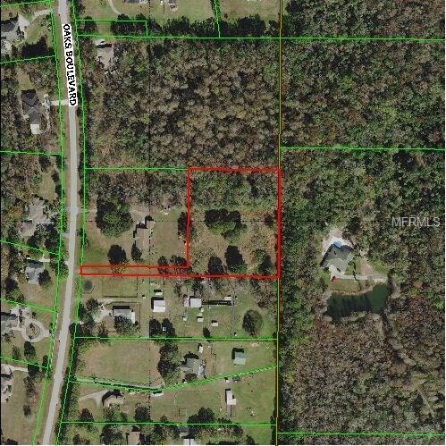 Oaks Oaks Boulevard N, Land O Lakes, FL 34639 (MLS #T2938309) :: G World Properties