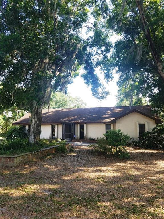 6601 Grace Sweat, Riverview, FL 33578 (MLS #T3100699) :: The Duncan Duo Team
