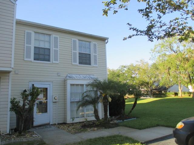 16141 Rambling Vine Drive E, Tampa, FL 33624 (MLS #T3103257) :: Griffin Group